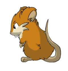 Gift: Carrot the Raticate by mirandooom
