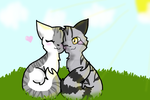 Ivypool and Bumblestripe by Bindiluckycat