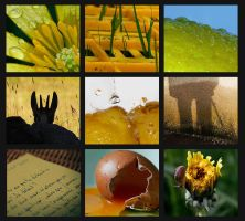 Patchwork - Nuances of yellow by Ankh-su-namun