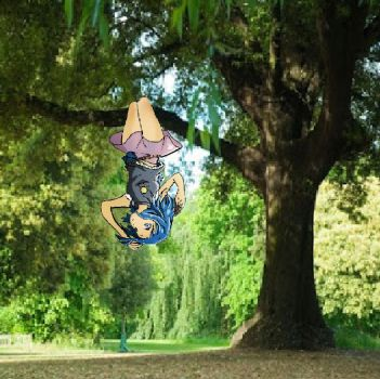 Zoko in a tree by WARMZOMBIE