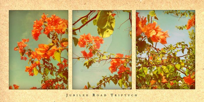 Jubilee Road Triptych by domclw