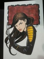 Wizard Philly 2013 - X-23 by RichBernatovech