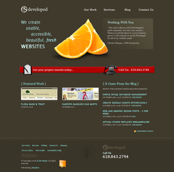 Es Developed Website Redesign by trebor79