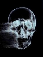 Dissentigration X-ray by stephenshanks