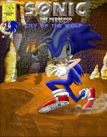 Sonic 113 Remaster by SonicRose