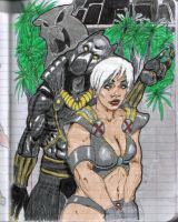 Black Panther and Storm by LordBishop08