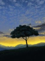 Evening Tree by mclelun