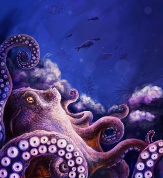 Octopus by Chimerum