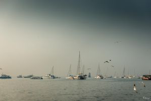 Incredible India - in Mumbai gulf by Rikitza