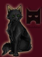 Shadow (Shadowstar) the 1st leader of ShadowClan by ARTbySONNE