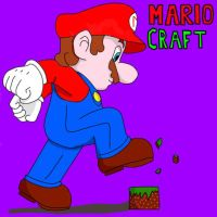 Mario Craft by EPIC0SITY