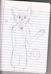 Cat by wolfygirl2341