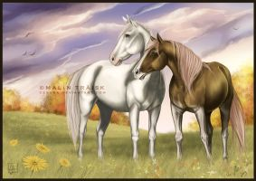 Apollo And Shay by cerona