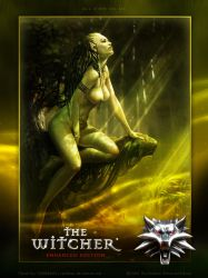 The Witcher Fanart entry01 by tambraxx
