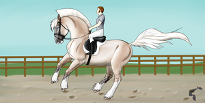 Advanced Dressage Kaaring YNH - Collected Canter by lionsilverwolf