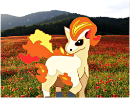Ponyta by jagged66