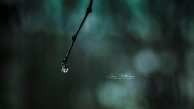 Sticky raindrop by zipfileART