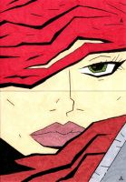 Red Sonja 20 and 21 by soliton