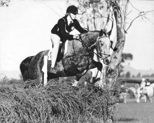 Cross Country Jumping by Rae134
