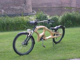 Plywood Bicycle by steven6773