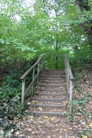 Steps two by ditney