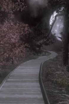 Premade Background  1441 by AshenSorrow
