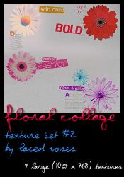 Texture Set 2- Floral Collage by LacedxRoses