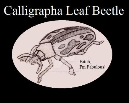 Calligrapha Leaf Beetle, Insect Buddies series 2 by UnicronHound
