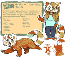 Torrie Reference (2013-2014) by starsweep