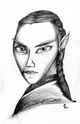 Arcania_Wood Elf by Enendill