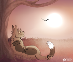 Watching the Sun Leave - Commission by shadowily