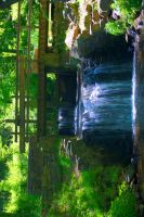 Newlin Grist Mill Falls 1 by Nefarious069