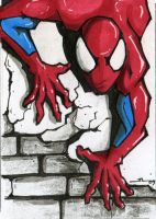 spidey by cowpatface