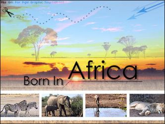 Born In Africa by MiSiLy