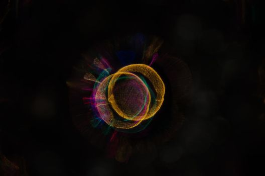Light Ring by OniPhotography