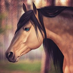 Andalusian by AriesRedLo
