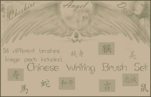 Chinese Writing Brush Set by Cheshire-Angel