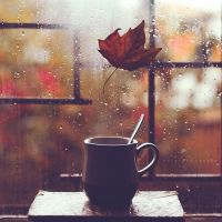 Fall mood by Cochalita