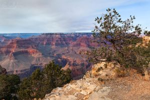 Canyon Overlook by ryangallagherart