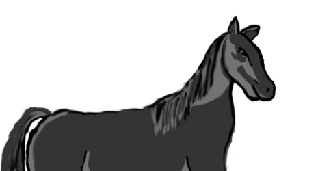 Photoshop horse sketch by OceanGoddess13