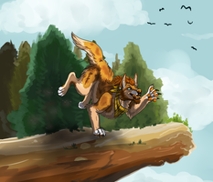 Life On The Edge .. or something by Sniv-The-Unworthy