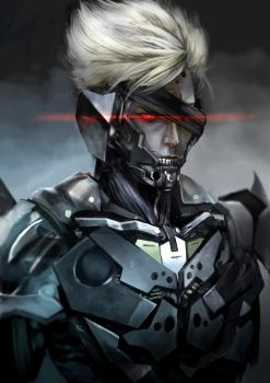 Re:Raiden 2014 by GreyRadian