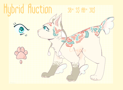 Hybrid Auction OPEN by Cheezeo