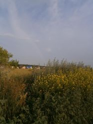 Rainbow from the field by TiElGar