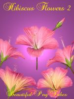 Hibiscus Flowers PNG Pack 2 by kayshalady