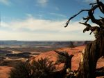 Canyonlands by seer