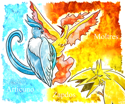 Kanto Bird trio by PlatinaSena