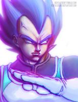 Vegeta Super Saiyan God by HentaiChimp