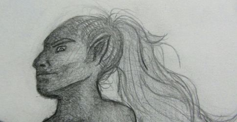 Centaur - Close Up by Seirykun