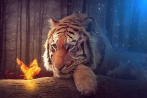 Tiger by spescarus